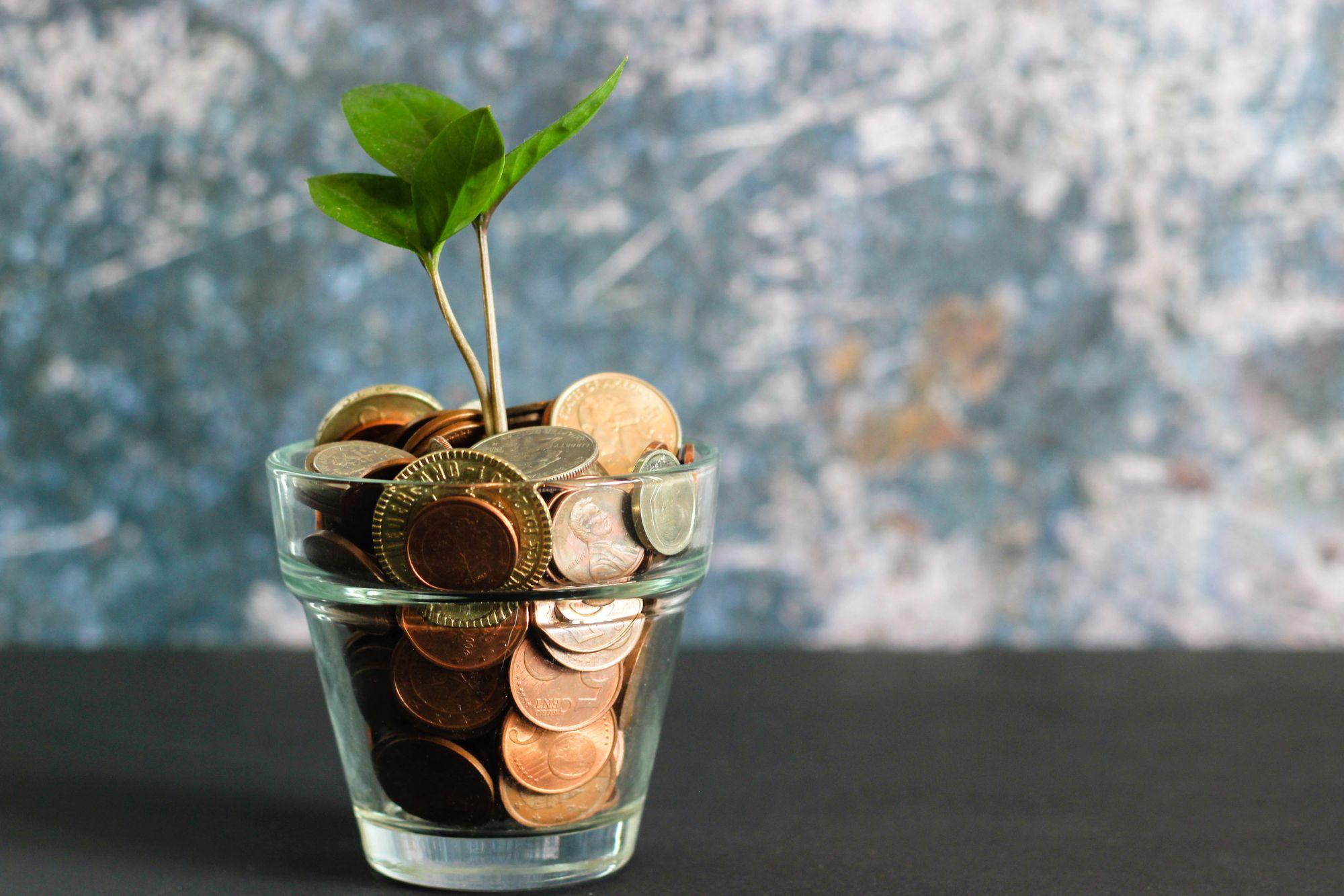 Solo entrepreneur saving cash