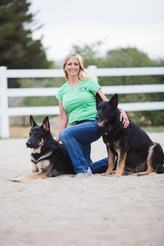 Man's Best Friends - Live Oak Dog Obedience